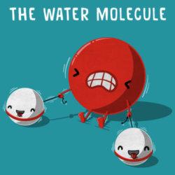 Molecola d'acqua